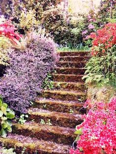 enchanted stairs in Portland, OR
