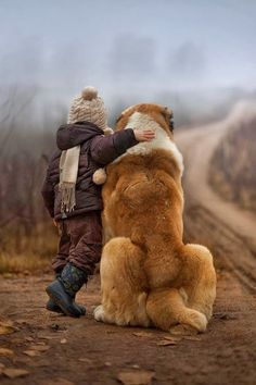 Love this pic. #petphotography http://waybrightphotography.com