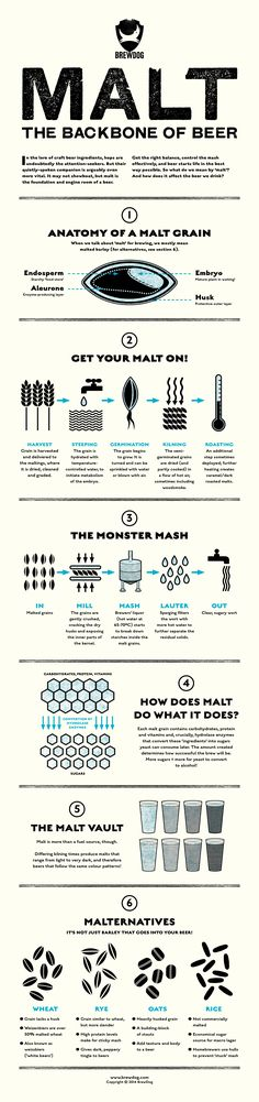 Infographic Malt the Backbone of Beer Beer 101, All Beer, Wine And Beer, Home Brewery, Home Brewing Beer, Beer Brewing Process, Craft Bier, Beer Poster, Beer Tasting