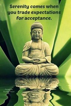 38 Awesome Buddha Quotes On Meditation Spirituality And Happiness 19 Serenity comes when you trade expectations for acceptance. Now Quotes, Life Quotes, Happy Quotes, Little Buddha, Buddhist Quotes, Buddhist Teachings, Buddha Quote, A Course In Miracles, Meditation Quotes