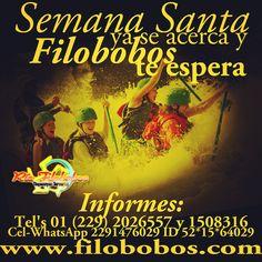 #SemanaSanta ya se acerca y #filobobos te espera http://www.filobobos.com #Veracruz #vacaciones