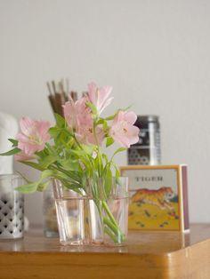 Pupulandia - Blogi | Lily.fi