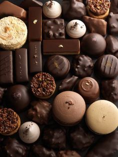 William Curley, THE Master Chocolatier Chocolate Bonbon, Chocolate Dreams, Chocolate Sweets, I Love Chocolate, Chocolate Heaven, Chocolate Shop, Homemade Chocolate, Delicious Chocolate, Chocolate Lovers