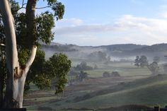 Winter mist in Spreyton, Tasmania. Tasmania, Mists, In This Moment, Island, Mountains, Places, Winter, Nature, Travel