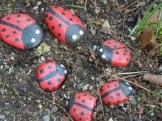painted ladybug rocks!
