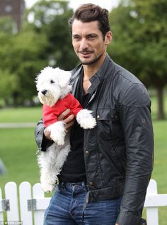 Could you love him anymore? David Gandy was in Primrose Hill to raise awareness of puppy farming