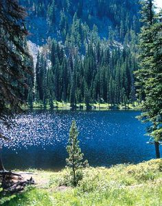 Washington State. I'd like to go there some day.  Looks beautiful