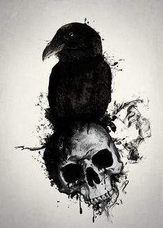 Cuervo 💙