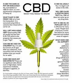 Bioreigns CBD Products are formulated with CBD derived from organic hemp plants. Containing no THC, Bioreigns CBD delivers the unadulterated benefits of pure CBD. Medical Cannabis, Cannabis Oil, Cannabis Growing, Cannabis Edibles, Cannabis News, Young Living Oils, Young Living Essential Oils, Young Living Products, Ganja