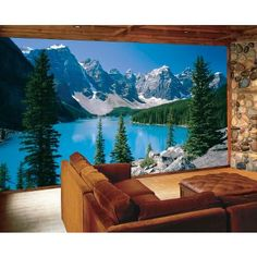 Wall Murals (Would be awesome for when we buy a house!)