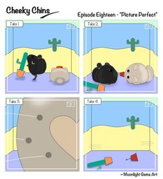 Cheeky Chins - Episode 18 - Picture Perfect