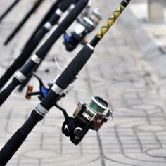 When starting out fishing or preparing for a fishing trip an angler is often overwhelmed with the choices of fishing gear that he has to make....
