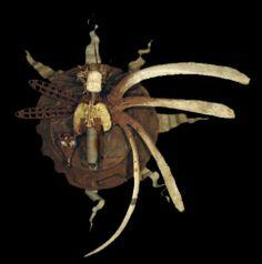 Robert Dampier - Assemblage Art Gallery, Found Object Art : Nephilem