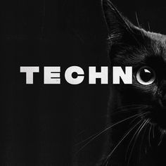 "Techno Stalkers® (@techno.stalkers) hat ein Foto auf seinem/ihrem Instagram-Konto veröffentlicht: ""Techno and Cats . . 📸: @techno_mood  . . . #techno #technomusic #technolovers #technodj…"" Techno, Dj, Wallpapers, Retro, Instagram, Pictures, Wallpaper, Techno Music, Retro Illustration"