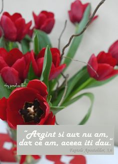 #citat #verset #Biblie #FapteleApostolilor Flower Qoutes, Everything Is Possible, Plants, Friday, God, Google, Quotes, Bible, Verses