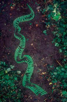 Andy Goldsworthy's Land Art - Plant Propaganda