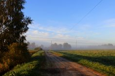The mist at Olaine. Latvia