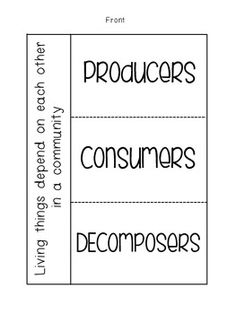 Worksheets Producers Consumers And Decomposers Worksheet food chains the ojays and on pinterest