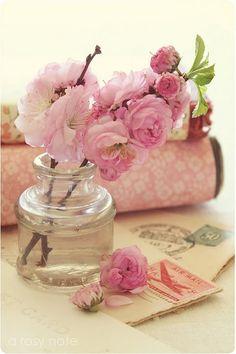Pink & Green Essence ✦  Ana Rosa ✦ https://www.pinterest.com/sclarkjordan/pink-green-essence/