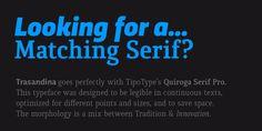 Trasandina - Webfont & Desktop font « MyFonts