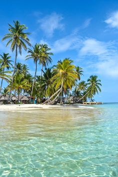 Kuanidup Island - Just one of the 365 post-card perfect tiny islands that make up the San Blas Islands, Panama. One for every day of the year! #panama #travel #sanblas #islands #paradise #caribbean