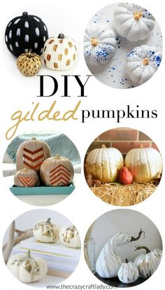 Metallics are popular this fall! Transform your pumpkins into a shiny, eye-catching piece of decor with these gilded DIY projects. These craft ideas are perfect for Halloween and Thanksgiving.
