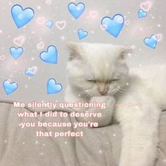 Cute Love Memes, Cute Quotes, Funny Cute, Cat Memes, Funny Memes, Wholesome Pictures, Couple Memes, Bae, Crush Memes