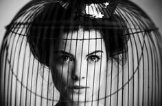 Bird cage, photo by Angela Kohler