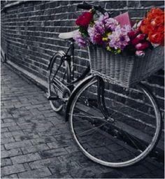 Cuadro en blanco y negro de bicicleta con flores a color