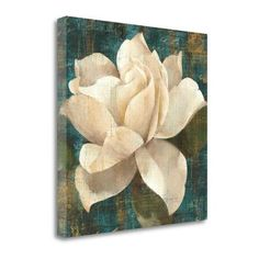 Tangletown Fine Art 'Gardenia Blossom' by Albena Hristova Painting Print on Wrapped Canvas