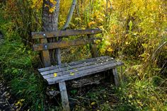 THANK GOD, ON ALL JOURNEYS, THERE ARE PLACES TO REST-THIS BENCH HAS WEATHERED A LOT OF STORMS AND IS POSITIONED ON A NATURE TRAIL THAT PROVI...