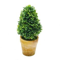 St Bonsai-artificial Plant Decor Topiary-artificial Mini Tree-001 (5.9 Tall 2.3Wx2.3L(1?) * Want additional info? Click on the image.