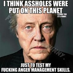 I think assholes were put on this planet just to test my fucking anger management skills. Sarcasm Quotes, Sarcastic Humor, Quotable Quotes, Wisdom Quotes, Life Quotes, Work Quotes, Great Quotes, Inspirational Quotes, Motivational