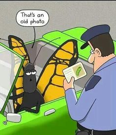 Getting Pulled Over.... Click to Check Out More Funnies...