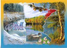 Minnesota - Seasons and Map Postcard