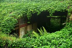 Gallery - Gallery: Mystical Photos of an Abandoned Chinese Village - 4