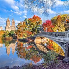 A beautiful early autumn morning at the Lake and Bow Bridge in... | New York City Feelings | Bloglovin'