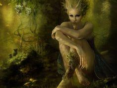 Image detail for -MagiCal CreAturE - Magical Creatures Wallpaper (20004336) - Fanpop ...