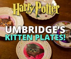 We can all agree that we hate Dolores Umbridge. There's really no question about it. But one thing we don't hate are kittens. Get ready for the cutest Harry...