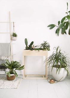 50 DIY Plant Stand Ideas for an Outdoor and Indoor Decoration TAGS: House plants, Hanging plants, Indoor plants decor, Plant stand indoor ideas, Wood plant stand Wood Flower Box, Flower Boxes, Diy Flowers, Plant Box, Diy Plant Stand, Outdoor Plant Stands, Plant Table, Pot Mason Diy, Decoration Plante