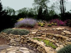 low maintenance landscaping ideas | low maintenance landscaping - Yahoo! Search Results