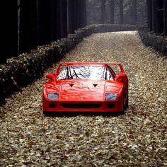 Ferrari F40 By: @ferrari #supercars #speed #porsche #bug #bugatti #mercedes #amg #jaguar #bmw #mclaren #ferrari #lamborghini #lambo #corvette #gumpert #pagani #koenigsegg #mansory #maserati #astonmartin #alfaromeo #dodge #chevrolet #chevy #camaro #ford #mustang #cadillac #audi