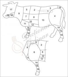1 – Mușchi. Este cea mai frageda carne de vită. Folosire: biftec tartar, biftec, medalioane, grătar, file mignon, beef Welington etc. 2 – Antricot/cotlet cu sau fără os. Cele de calitate superioară…