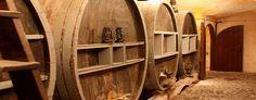 Wine Tour in Santorini-Santorini Wine Adventure Tours | Private Tours | Greek Cooking class | Akrotiri Excavations
