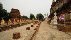 sitzende Buddhas am Wat Yai Chai Mongkhon Tempel