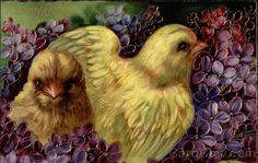 Two Chicks Surrounded by Violets Series 1520 A Happy Easter