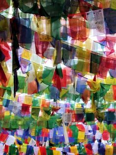 Tibetan Prayer flags. All in a mass. This just is so incredibly moving to me. What a thing it would be to walk amongst them.
