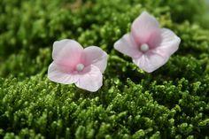 Pink hydrangea stud earrings - Flower earrings. Floral earrings. Spring earrings. Bridal earrings. Clay earrings. Handmade Floral jewelry.