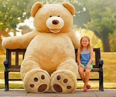 18 Best Teddy Bears Images In 2019