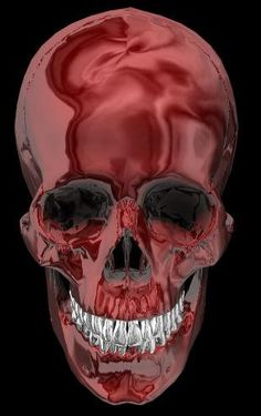Skull in Burgundy. |  http://www.facebook.com/pages/Creative-Boys-Club/574340755933728?ref=hl